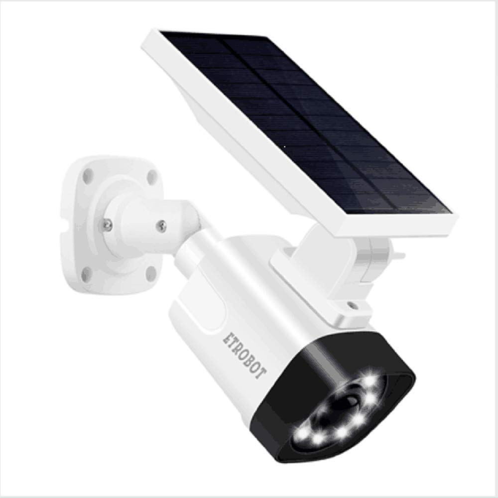 Solar Powered Motion Sensor Light and ETROBOT Dummy Fake ...